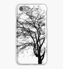 Tree's Silhouette iPhone Case/Skin