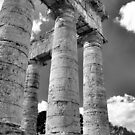 Doric Temple by Francis Drake