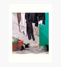 Trousers & Cats Art Print