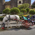 ....roaming in Naples - Italy  by John44