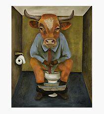 Bull Shitter Photographic Print