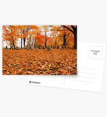 Autumn Cemetary Postcards