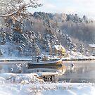 Christmas card - Norwegian txt by julie08