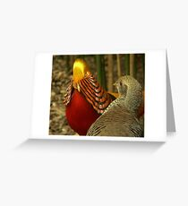Golden Pheasants Greeting Card