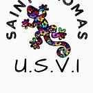 SAINT THOMAS UNITED STATES VIRGIN ISLANDS LIZARD GECKO TROPICAL HIBISCUS FLOWER COLORFUL RAINBOW TROPICAL BEACH by MyHandmadeSigns