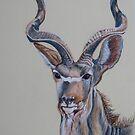 Kudu Bull in Pastel by Linda Sparks