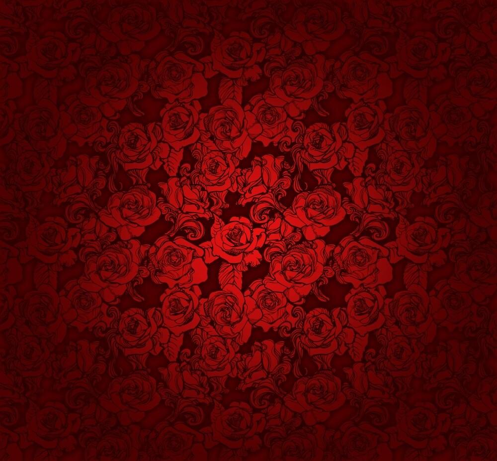 Roses by jimiyo