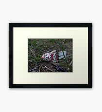 Down and out 2 Framed Print