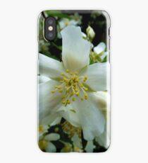Syringa iPhone Case/Skin