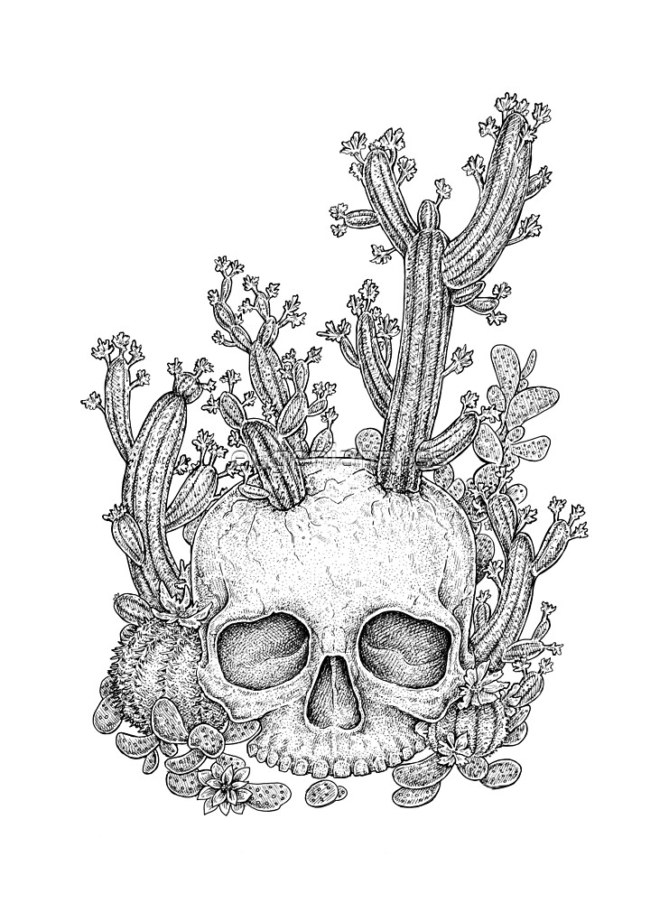 Cactus Skull by eugeniahauss