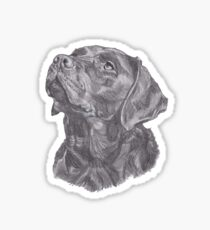 Classic Labrador Retriever Dog Profile Drawing Sticker