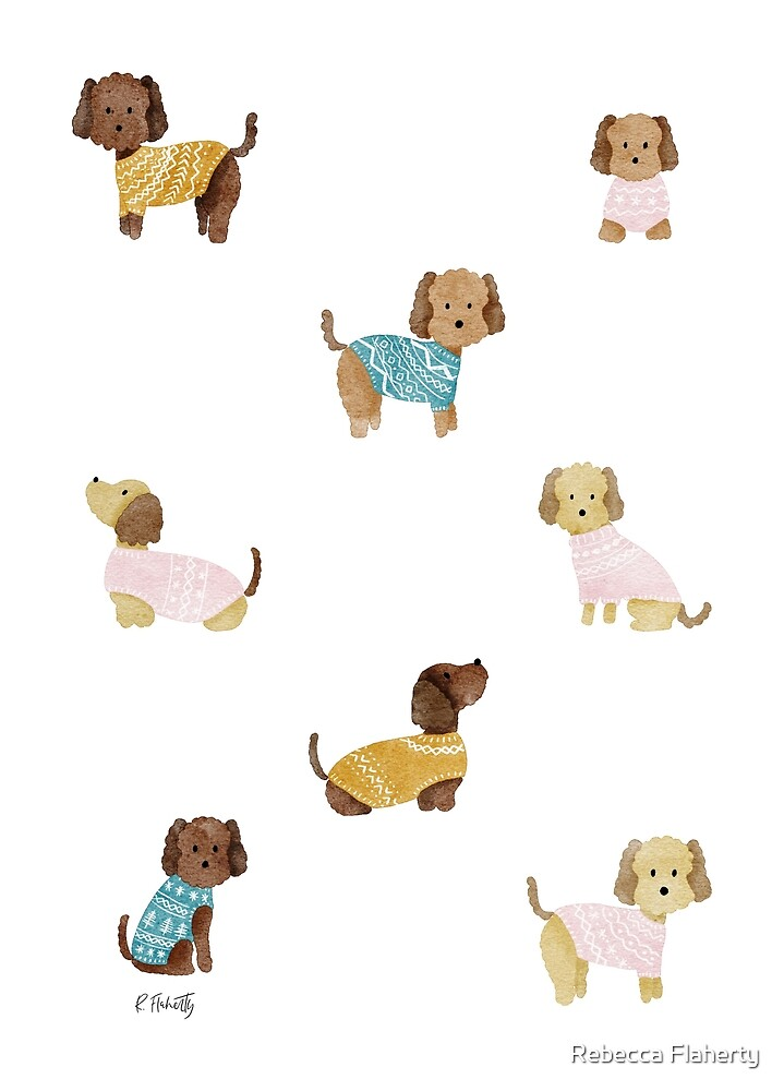 Cockapoo Dogs in Jumpers by Rebecca Flaherty
