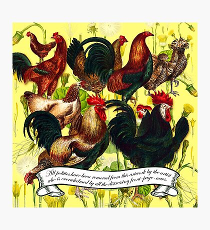 Gazing at Victorian Chickens 4 Photographic Print