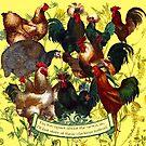 Gazing at Victorian Chickens 1 by Donna Catanzaro