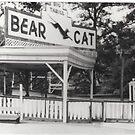 """""""The Bear Cat"""" by Gail Jones"""