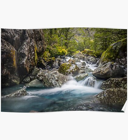 Upper Hollyford river Poster