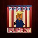 No puppet.  by jlechuga
