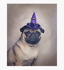 Peppa Pug Hates Halloween Photographic Print