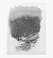 night scene snow Photographic Print