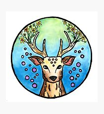 Flower Deer  Photographic Print