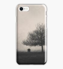 Perfect Illusion iPhone Case/Skin