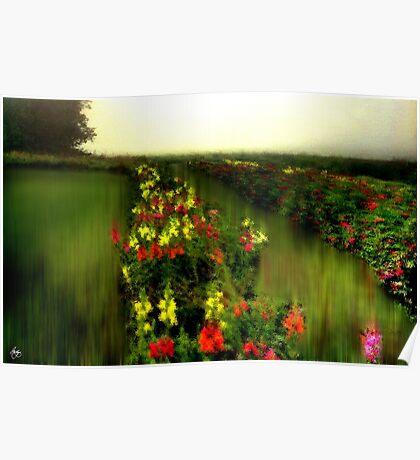 Liquid Flower Bed Poster