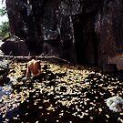 Nude in a Pool of Leaves by Wayne King