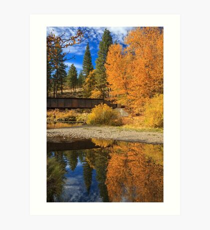 Bridge Over The Susan River Art Print