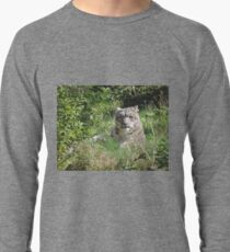 In Love There Is No Because Lightweight Sweatshirt