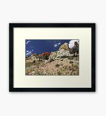 Springtime At Red Rock Canyon Framed Print