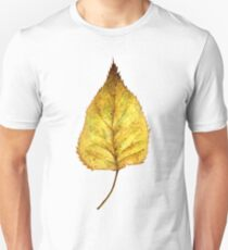 Birch leaf in autumn T-Shirt