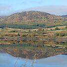 Clatteringshaws Loch -Dumfries & Galloway, Scotland by sarnia2
