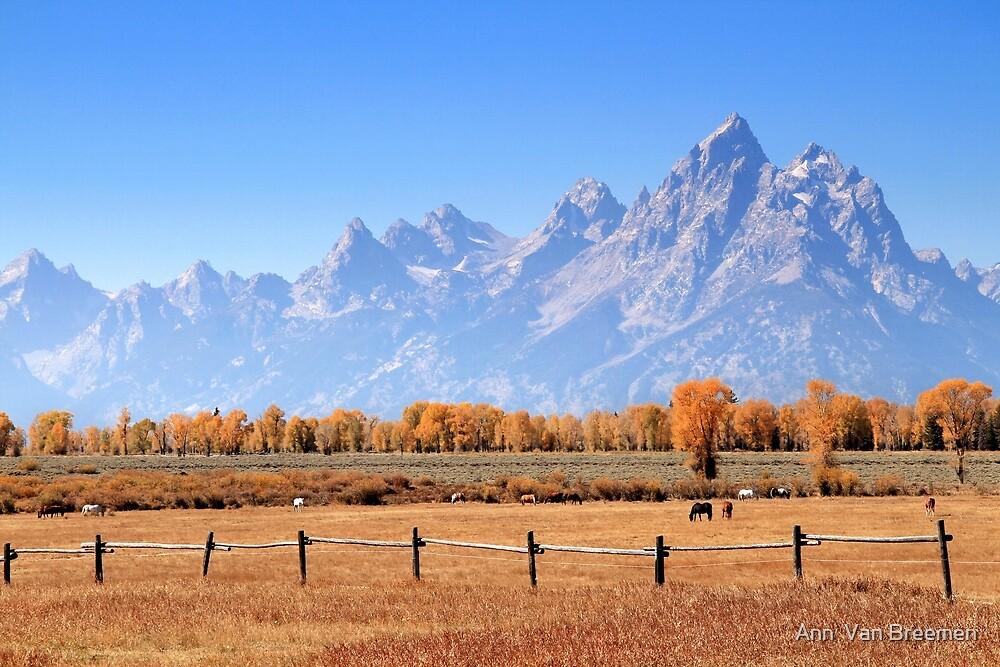 Teton Ranch by Ann  Van Breemen