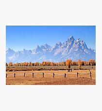 Teton Ranch Photographic Print
