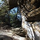 Sky Bridge  Red River Gorge by wallace66