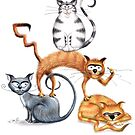 The Collection of Crazy Cats illustrated by Kaz Sagovac by Kaz Sagovac