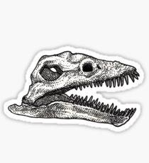 Thalassomedon Sticker