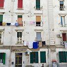 Windows in Naples by Christine  Wilson