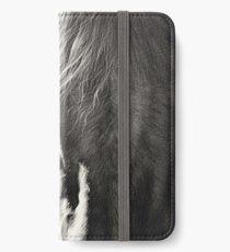 Glance iPhone Wallet/Case/Skin