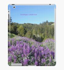 Purple Mountains Saratoga iPad Case/Skin
