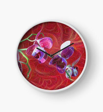 Phalaenopsis B Clock