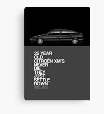 Citroen XM 25th Anniversary Poster Canvas Print