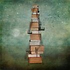Stairway to knowledge by KarinesPic