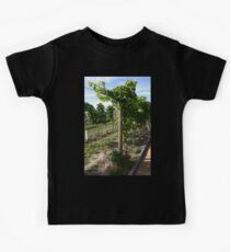 Vineyard #5 Kids Clothes