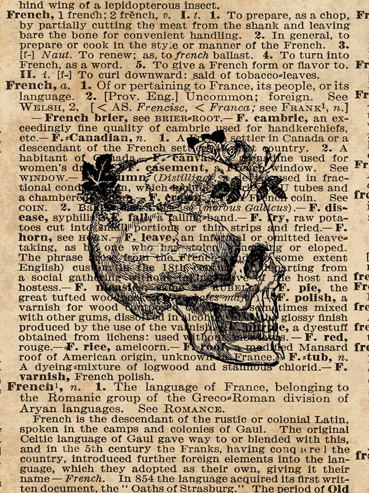 Skull in Floral Wreath Ink Drawing Dictionary Art by DictionaryArt