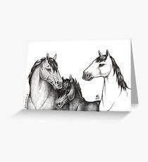 Equine Trio Greeting Card