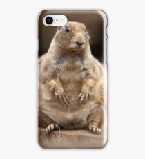 So I'm a Little Short for my Weight iPhone Case/Skin
