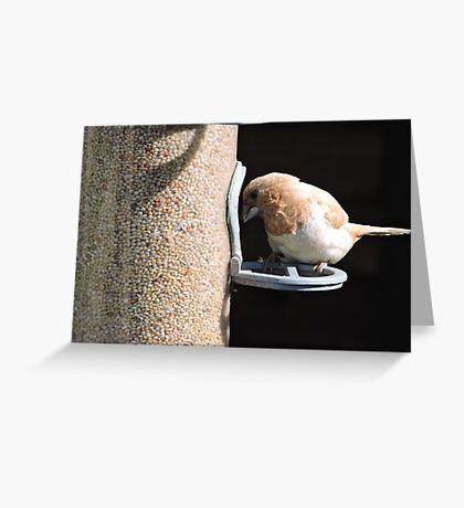 Demeter  Greeting Card