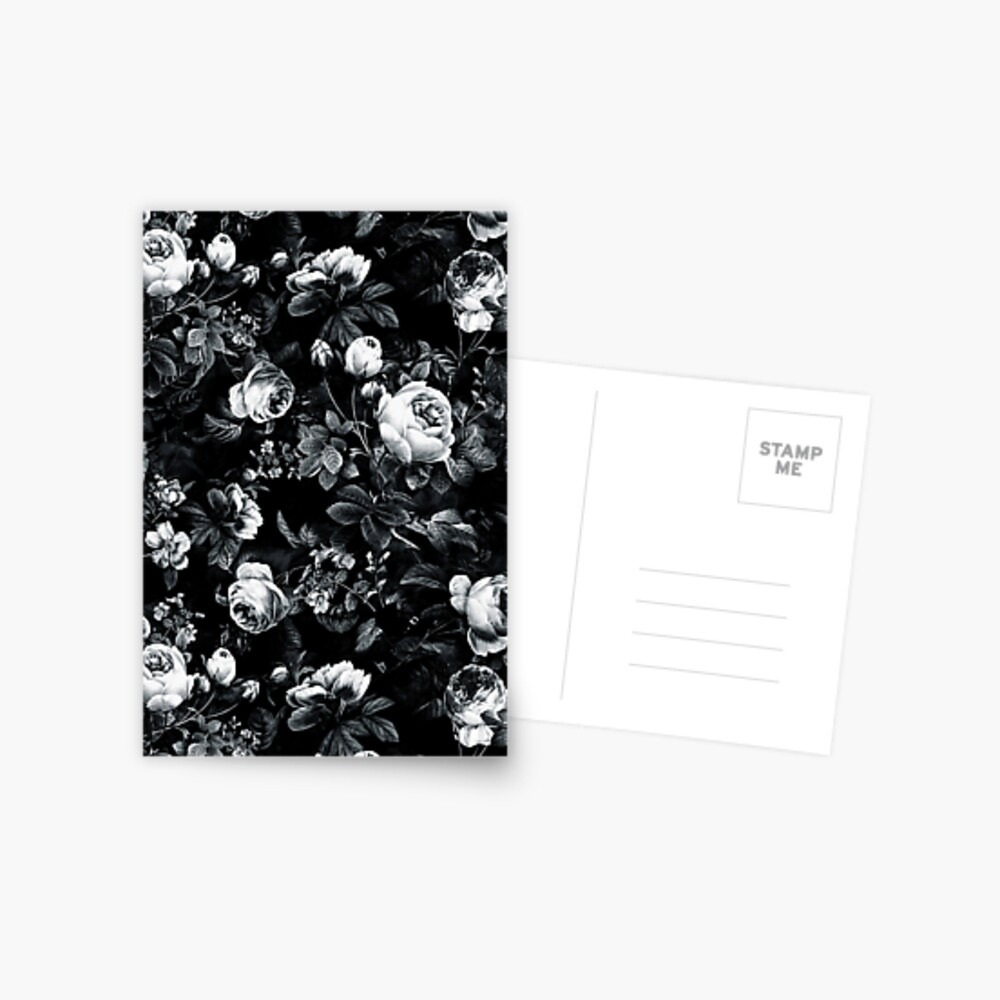 Roses Black and White Postcard
