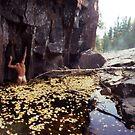 Nude Standing in a Leaf Pool  by Wayne King
